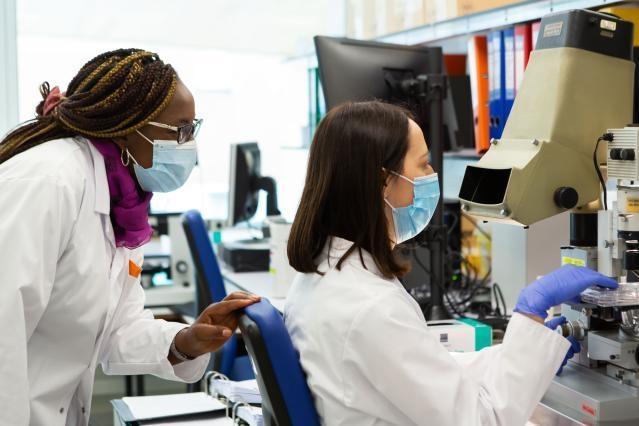 Brussels Academic Hospital Laboratory